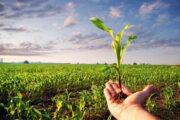 طرح راهاندازی شرکتهای سهامی تعاونی پیشرفت کشاورزی پایدار روستایی و شهری