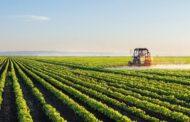 سرنوشت صادرات محصولات کشاورزی ایران در دوره کرونا